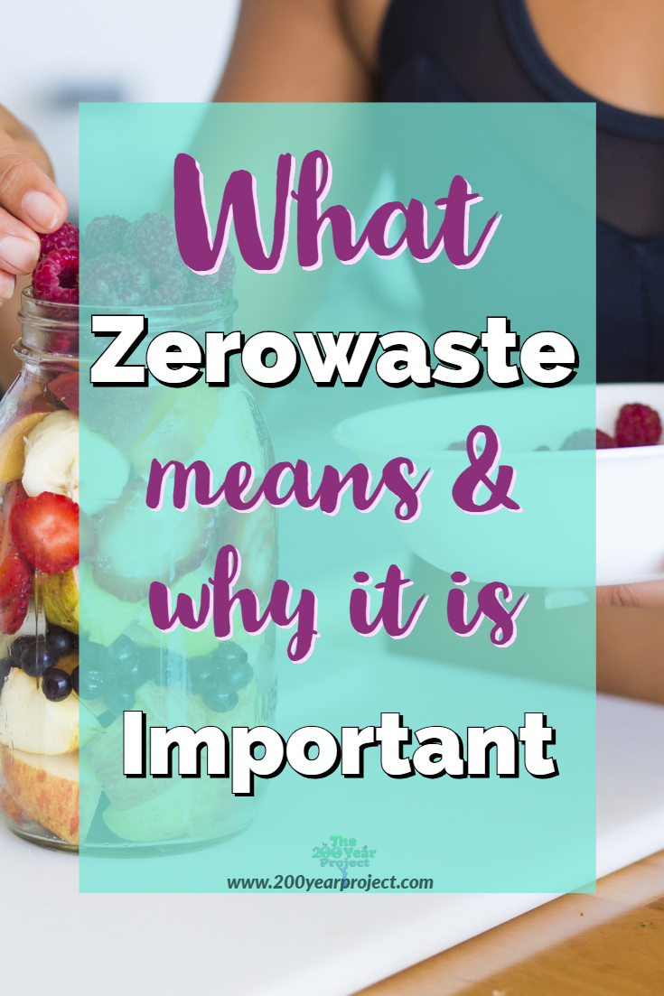 Why is Zerowaste important and what does it mean? We need to understand why our economy needs to go towards a circular zerowaste economy if we want this planet to survive our greed. Find out! #zerowaste #circulareconomy #zerowasteeconomy #reducetrash